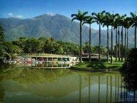 Parque del Este de Caracas