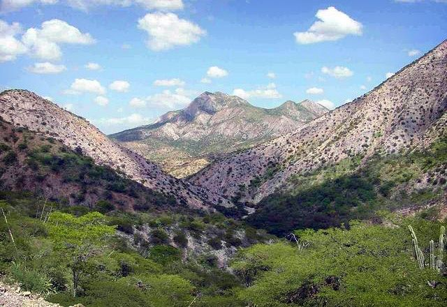 Parque Nacional Cerro Saroche | Lara