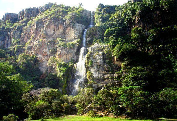 Parque Nacional Dinira   Cascada El Vino