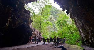 Monumento Natural Alejandro de Humboldt   Cueva del Guácharo